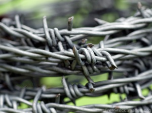 Barbed-Wire-Fencing hbyoulian.en.made-in-china.com