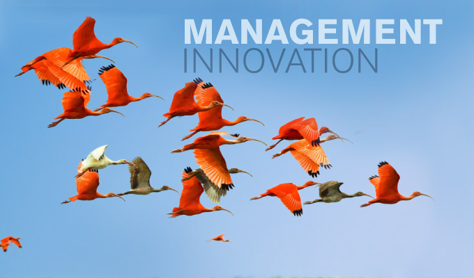 Management Innovation integnology.com