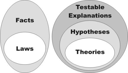 venn_diagram_theory_law_austringer.net
