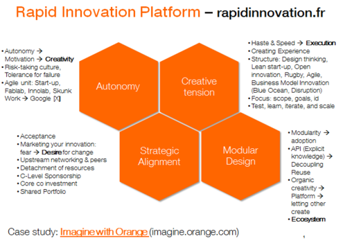 RapidInnovation 1 slide