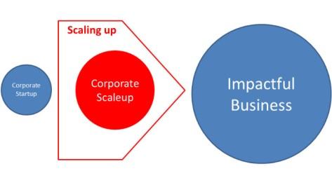 corporate scaleup